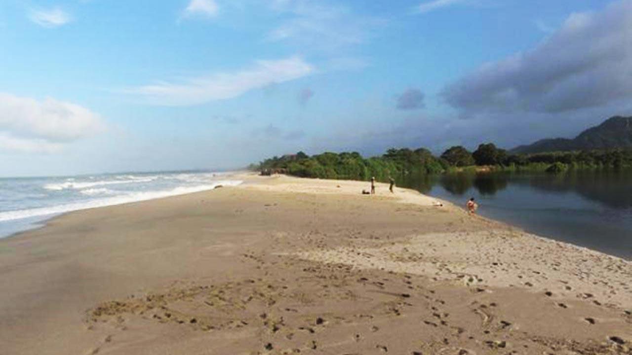 Río y Playa Palomino